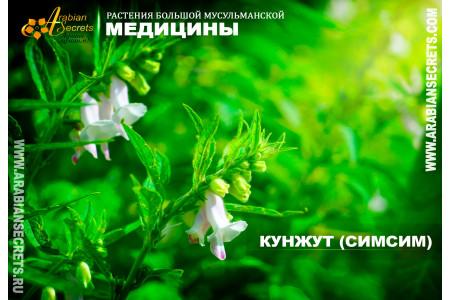 КУНЖУТ (СИМСИМ)